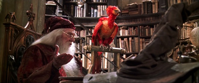 """Hey, Dumbledore. Fill up my bird feed you dingus."""